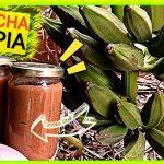 Receta mejor mermelada de plátano casera by mixim89