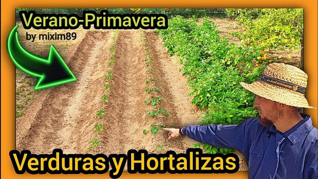VERDURAS y HORTALIZAS ¿Qué Cultivar en PRIMAVERA? (Empieza tu Huerto Urbano) by mixim89