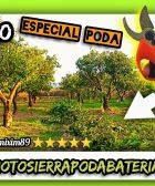 Las mejores y más ligeras tijeras de poda a batería Kebtek unboxing y review agricultura y jardineria by mixim89