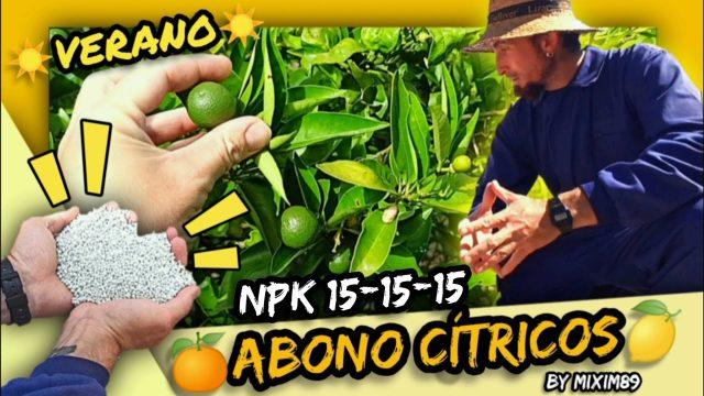 """Abonado en Cítricos (FERTILIZACIÓN en VERANO) Naranjos y Limoneros NPK """"Triple 15"""" by mixim89"""