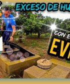 2. Sistema de DRENAJE de AGUA en SUELOS AGRÍCOLAS Alcaduf Cultivos Cítricos 100% SANOS by mixim89