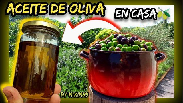 Como Hacer en Casa ACEITE de OLIVA VIRGEN EXTRA (Paso a Paso) by mixim89